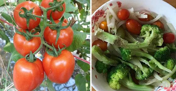 Đem cà chua nấu với 2 thứ này, vừa ngon lại bổ hơn nhân sâm, nhiều người bỏ phí mà không biết